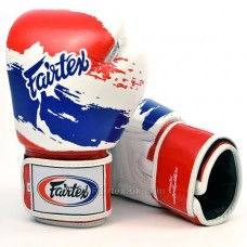 Fairtex Thai Pride Boxing Gloves